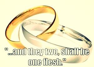 One Flesh Rings